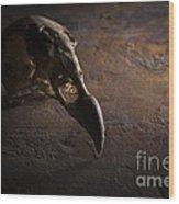 Turkey Vulture Skull On Slate Wood Print