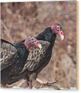 Turkey Vultures Square Wood Print