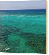 Turks Turquoise Wood Print by Chad Dutson