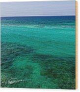 Turks Turquoise Wood Print