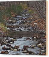 Turner Falls Stream Wood Print