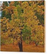 Turning Into Autumn Wood Print