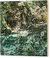 Turquoise Forest Pond On A Summer Day No1 Wood Print