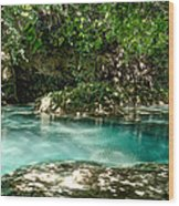 Turquoise Forest Pond On A Summer Day No3 Wood Print