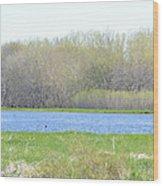 Turquoise Marsh Wood Print
