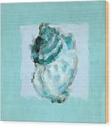 Turquoise Seashells Vi Wood Print by Lourry Legarde