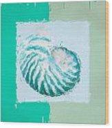 Turquoise Seashells Xii Wood Print by Lourry Legarde