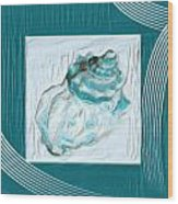 Turquoise Seashells Xxiv Wood Print
