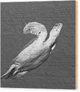 Turtle Gaffiti Wood Print