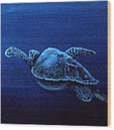 Turtle In The Red Sea Wood Print