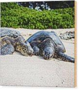 Turtle Lovin Wood Print