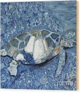 Turtle On Black Sand Beach Wood Print