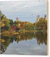 Turtle Pond - Central Park - Nyc Wood Print