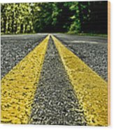 Turtle's View Of Forest Road E67 Wood Print