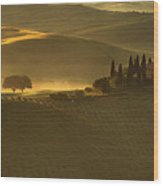 Tuscan Farmhouse Wood Print by Andrew Soundarajan