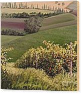 Tuscan Hills Wood Print by Michael Swanson