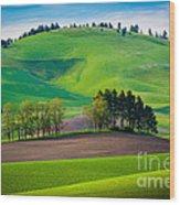 Tuscan Palouse Wood Print