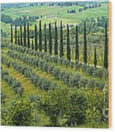 Tuscan Panoramic 3 Wood Print