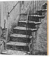 Tuscan Staircase Bw Wood Print