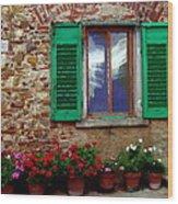 Tuscany - Flower Pots In Chianti Wood Print