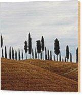 Tuscany Hill Wood Print by Arie Arik Chen