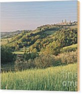 Springtime In Tuscany Wood Print