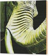 Tusk 1 - Dramatic Elephant Head Shot Art Wood Print by Sharon Cummings