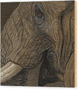 Tusker Wood Print by Aaron Blaise