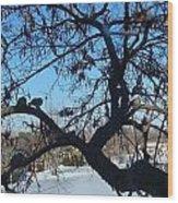 Twelve Doves Wood Print