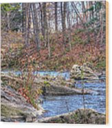 Twenty Mile Creek Wood Print