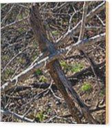 Twigscomp 2009 Wood Print