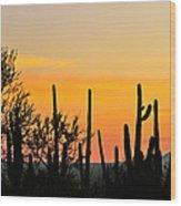 Twilight After Sunset Sonoran Desert Wood Print