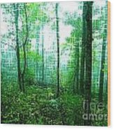 Twilight Forest Wood Print by Lorraine Heath
