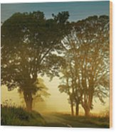 Twilight Guardians. Misty Roads Of Scotland Wood Print by Jenny Rainbow