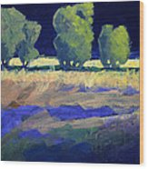 Twilight Landscape Wood Print