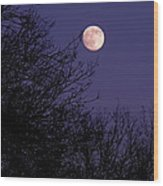 Twilight Moon Wood Print by Rona Black