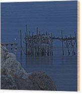 Twilight On The Gulf Wood Print