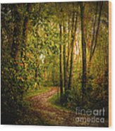 Twilight Rainbow Walk Wood Print