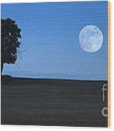 Twilight Solitude Wood Print