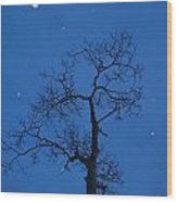 Twilight  Tracery  Wood Print