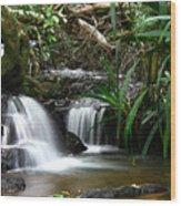 Twin Cascades Wood Print