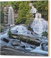 Twin Falls South Carolina Wood Print