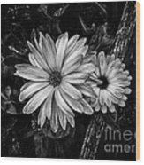 Twin Flowers And A Branch  Wood Print