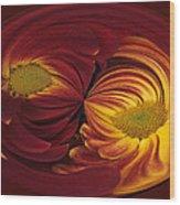 Twin Gerbera Abstract Wood Print