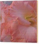 Twin Gladiola Blooms Wood Print