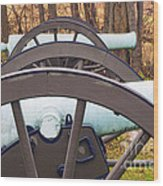 Twin Guns Wood Print