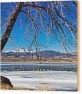 Twin Peaks Blue Wood Print