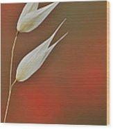 Twin Wood Print