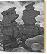 Twin Toadstools Wood Print