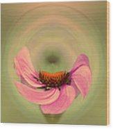 Twirls Or Skips Wood Print